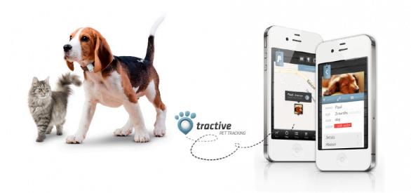 Tractive:GPS tracking per non perdere il proprio cane o gatto 1