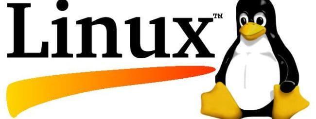 Linux-logo-650x245