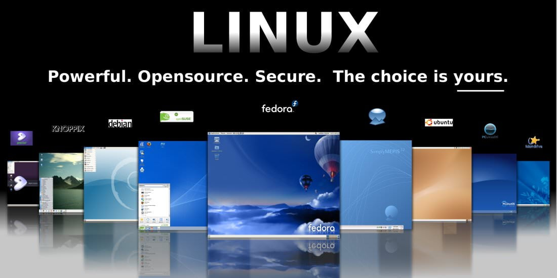 linux11002
