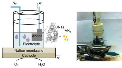 enzymatic-fuel-cell-diagram_t