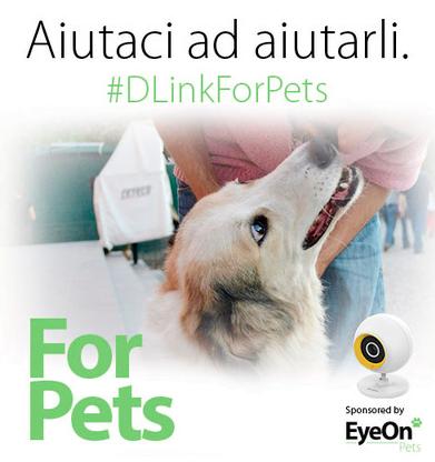 D-Link e l'associazione Vita Da Cani Onlus, con la campagna charity #DLinkForPets, aiutano gli animali abbandonati 1