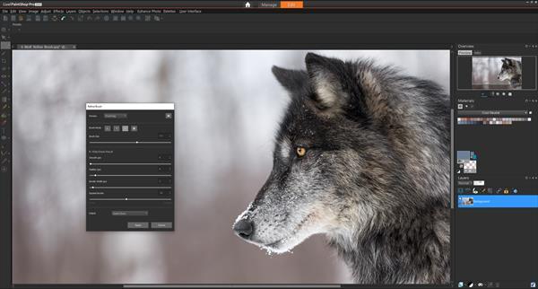 PaintShop Pro 2020 debutta con nuovi strumenti intelligenti per incredibili creazioni fotografiche 1